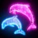 Dauphins néons scintilants