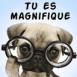 """Chiot intello """"Tu es magnifique"""""""