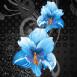 Fleurs asiatiques bleues