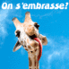 "Girafe folle ""On s'embrasse"""