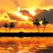Paysage de coucher soleil magnifique