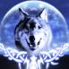 Loup devant une lune scintillante
