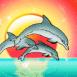 Trio de dauphins devant coucher de soleil