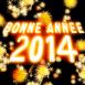 """Feu d'artifice """"Bonne année 2014"""""""