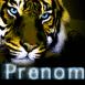 Tigre aux yeux per�ants