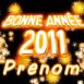 """""""Bonne année 2011"""""""
