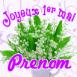 "Muguet ""Joyeux 1er mai"""