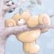 Forever Friends: Il grimpe aux arbres