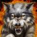 Loup enflamm�