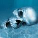 Crâne au fond des eaux
