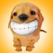 Chiot qui sourit