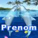 Dauphins jouant dans le corail