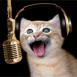 Chat chantant