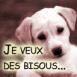 """Chiot labrador """"Je veux des bisous"""""""