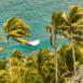 Mer et palmiers (Seychelles)