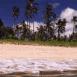 Plage et palmiers (Bali)