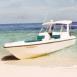 Bateau à moteur sur la mer