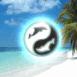 Ying Yang et dauphins sur la plage