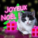 Chat de no�l fluo