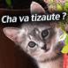 """""""Cha va tizaute?"""""""