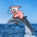 Cochon sur un dauphin