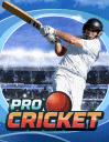 Pro cricket