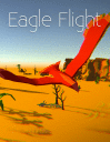 Eagle flight