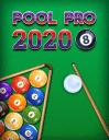 Pool pro 2020