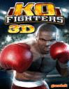 KO Fighter 3D