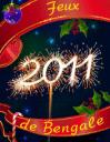 Feux de Bengale: Bonne année