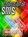 Dictionnaire de SMS: Amour, rupture, moqueries...