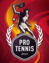 Pro tennis 13