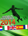 World football 2014