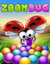 Zoom bug
